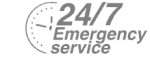 24/7 Emergency Service Pest Control in Croydon, Addiscombe, Selhurst, CR0. Call Now! 020 8166 9746